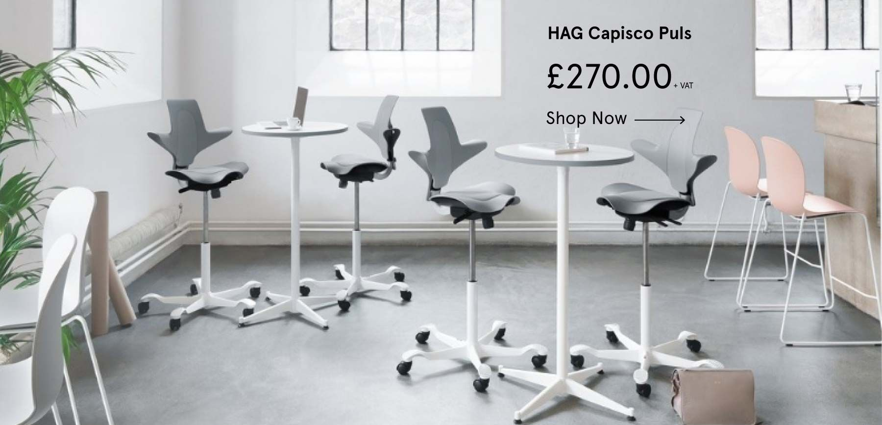 HAG Capisco office chairs in a contemporary office